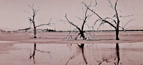 Salton Sea Film-4