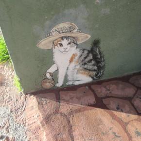 All The Cats From Miami, AZ
