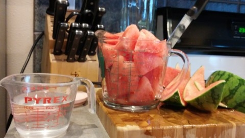 Note the 1 cup water to 4ish cups melon ratio.